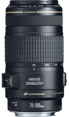 Buy Canon EF 70-300mm f/4-5.6 IS USM Lens: Lens