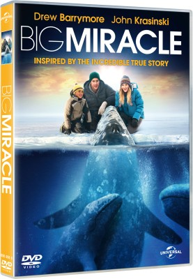 Buy Big Miracle: Av Media