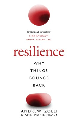 Buy Resilience: Why Things Bounce Back: Book