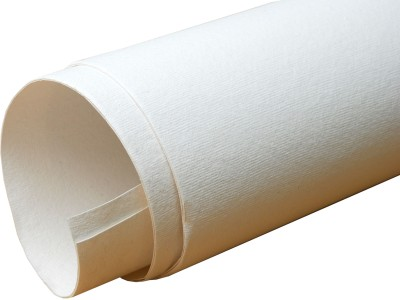 Buy Camlin Cotton Medium Grain Canvas Roll: Canvas