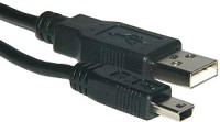 Amzer 82927 Mini USB Data Sync and Charge Cable - 1ft: Data Cable