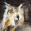 The Night Owl Canvas - Small