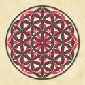 Sacred Geometry- The Flower Of Life 1 Fine Art Print - Small