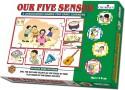 Creative's Our Five Senses - 36 Pieces