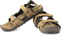 Woodland Leather Casual Sandals: Sandal