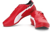Puma evoSPEED F1 Low SF Sneakers: Shoe