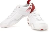Lotto Revero Sneakers: Shoe