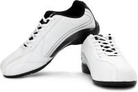 Fila Varsity Sneakers: Shoe