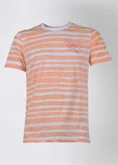 Compare John Players Round Neck Striped Men T-shirt: T-Shirt at Compare Hatke