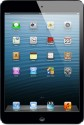 Apple 16GB IPad Mini With Wi-Fi And Cellular - Black And Slate